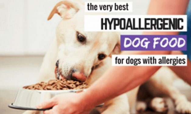 Royal Canin Hypoallergenic Food For Small Dog Reviews